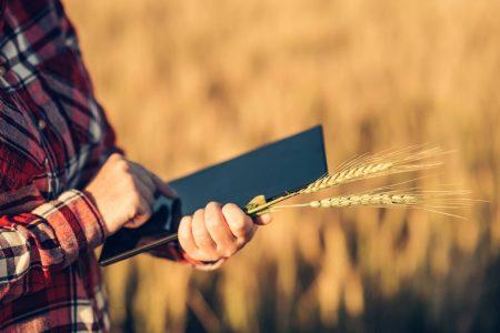 Реєстрація сільськогосподарського кооперативу крок за кроком
